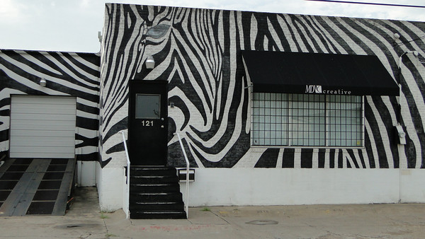Zebra Store